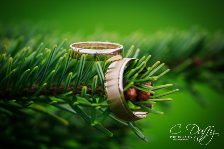 Paul & Karen Lane Wedding-11371