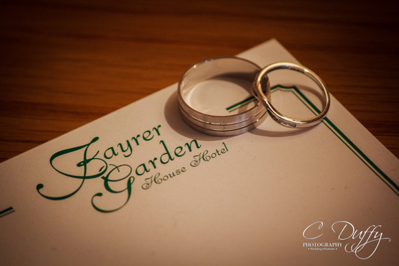 Chris & Alyson, Fayrer Garden Hotel-10091
