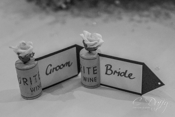 Neil & Natasha wedding-11364